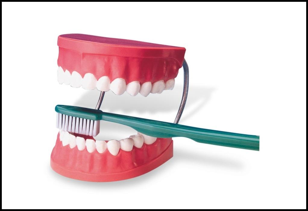 Manual Vs Power Toothbrush Dentodontics